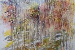 Herbst im Harz / Aquarell / 24 x 17